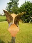 Driehoeksvogel goud (2)